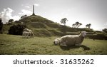Sheep On One Tree Hill