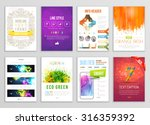 set of flyer  brochure ... | Shutterstock .eps vector #316359392