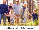 happy multi generation family... | Shutterstock . vector #316367672