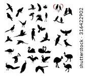 the big set of vector wild... | Shutterstock .eps vector #316422902