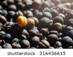 close up dried coffee beans  | Shutterstock . vector #316436615