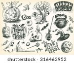vector vintage hand drawn... | Shutterstock .eps vector #316462952