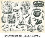 vector vintage hand drawn... | Shutterstock .eps vector #316462952