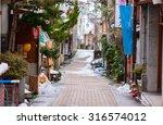 hot spring resort town shibu... | Shutterstock . vector #316574012