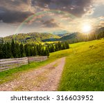 composite landscape with fence under the rainbow near the path through meadow up the hillside to coniferous forest  on the mountain at sunset - stock photo