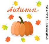 autumnal background with... | Shutterstock .eps vector #316605152