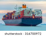 Container Cargo Ship Carrying...