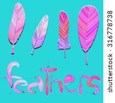 set of feather brushes for... | Shutterstock .eps vector #316778738