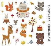 Woodland Animals In Autumn Time....