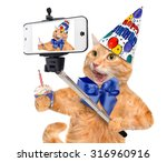birthday cat  taking a selfie... | Shutterstock . vector #316960916