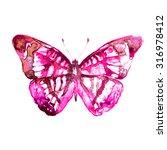 butterflies design | Shutterstock . vector #316978412