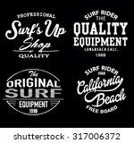 vector retro surf label set.   Shutterstock .eps vector #317006372