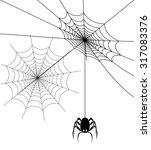spider web | Shutterstock .eps vector #317083376