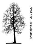 tree  vector  | Shutterstock .eps vector #3171027