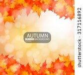 autumn abstract blurred... | Shutterstock .eps vector #317116892