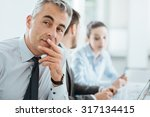 confident professional business ... | Shutterstock . vector #317134415