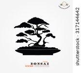 bonsai.bonsai with pot on gray...
