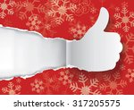 snowflakes background with torn ... | Shutterstock .eps vector #317205575