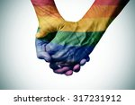 closeup of a gay couple holding ... | Shutterstock . vector #317231912