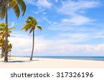 palm trees on a beautiful sunny ...   Shutterstock . vector #317326196