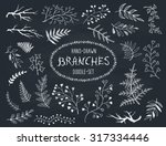 hand drawn branches collection. ... | Shutterstock .eps vector #317334446