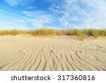 Dunes On The Beach In Leba ...