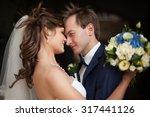 elegant gorgeous happy ... | Shutterstock . vector #317441126