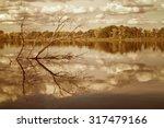 Autumn Forest  Clouds Reflecte...