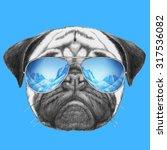 Portrait Of Pug Dog With Mirro...