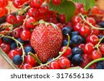 Tasty And Healthy Berries  Red...