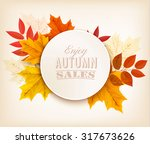 autumn sales banner with... | Shutterstock .eps vector #317673626