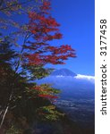 beautiful fall colors... | Shutterstock . vector #3177458