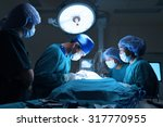 group of veterinarian surgery... | Shutterstock . vector #317770955