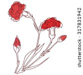 carnation flowers on a white... | Shutterstock .eps vector #317831942