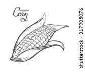 corn  outline style  for menu ... | Shutterstock . vector #317905076