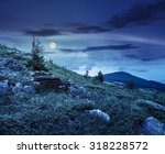 hillside of mountain range with coniferous tree on meadow at night in full moon light - stock photo