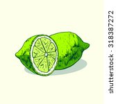 isolated illustration of lime.... | Shutterstock .eps vector #318387272