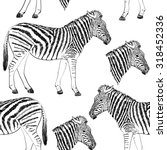 Sketch Of A Zebra. Hand Drawn...