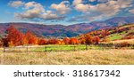 colorful autumn landscape in... | Shutterstock . vector #318617342