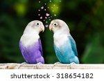 Blue And Purple Lovebird...