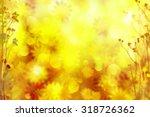 Autumn Flowers Sunny Backgroun...
