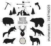 hand drawn wilderness animals...   Shutterstock . vector #318748205