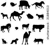 farm animals livestock and... | Shutterstock .eps vector #31884013