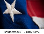 macro or close up of american... | Shutterstock . vector #318897392