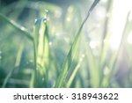 blur vintage color nature of...   Shutterstock . vector #318943622