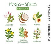 herbs and spices collection 12. ... | Shutterstock .eps vector #318954152