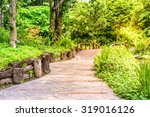 stone pathway middle of flora... | Shutterstock . vector #319016126