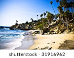 california beach with trees ... | Shutterstock . vector #31916962