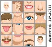 body parts 1 | Shutterstock .eps vector #319187558