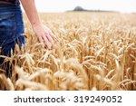 farmer walking through field... | Shutterstock . vector #319249052